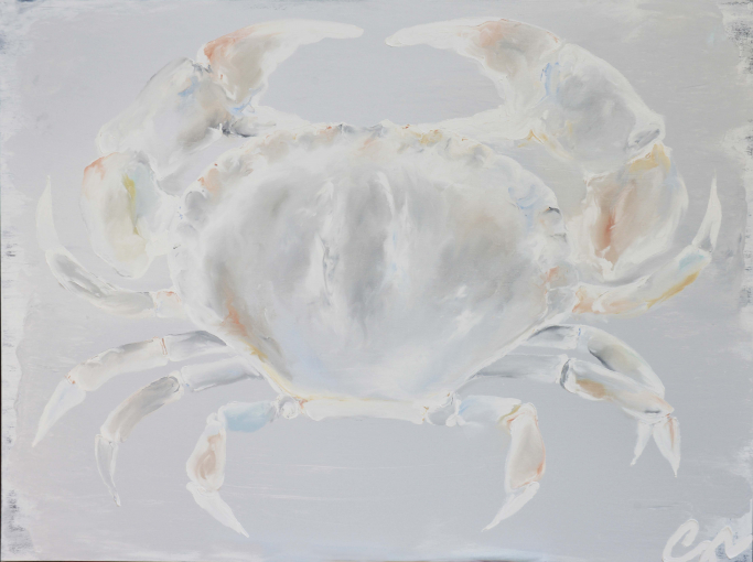 Seaview Crab - Pale Grey