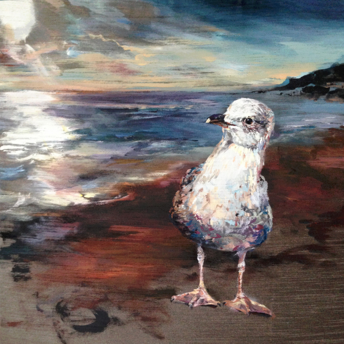 Young Seagull - Seagrove Bay