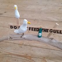 DO -- Feed the Gulls