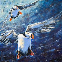 Puffins coming in to land